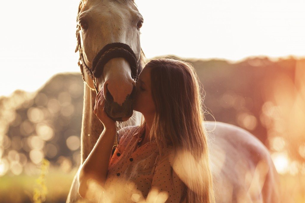 horse and owner
